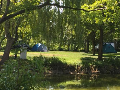 Rustige camping met vijver